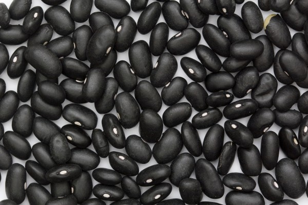 Black turtle beans. Photo by Sanjay Acharya.